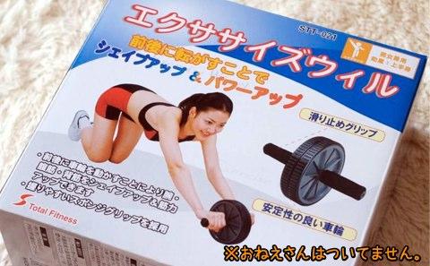 100120_fitness_roller_1